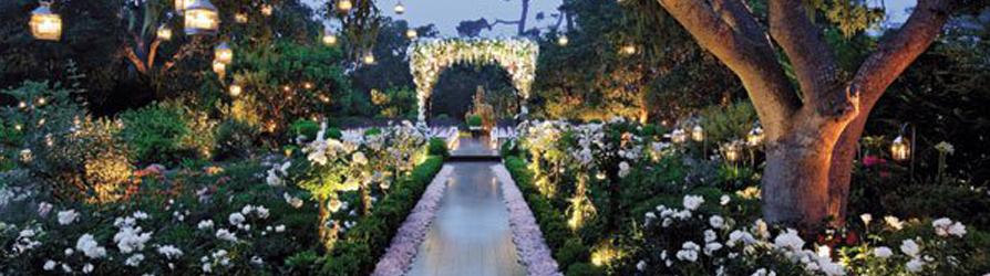 Свадебные тенденции Чистая Романтика