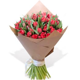 Букет из 50 Пионовидных Красных Тюльпанов в Крафте