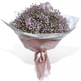 Букет из Розовой Гипсофилы в Упаковке Тренд салон Планета цветов