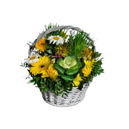 Корзина из брассики, герберы, ромашки и травы
